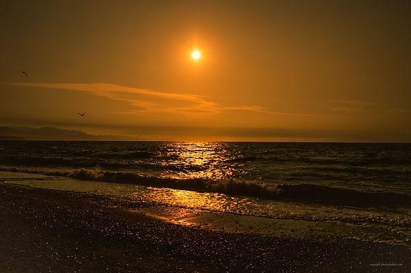 Dungeness Bay WA.jpg
