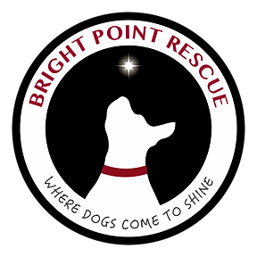 BRIGHT POINT LOGO FINAL.png