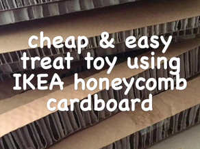 DIY Ikea Cardboard Treat Toy Video Tutorial