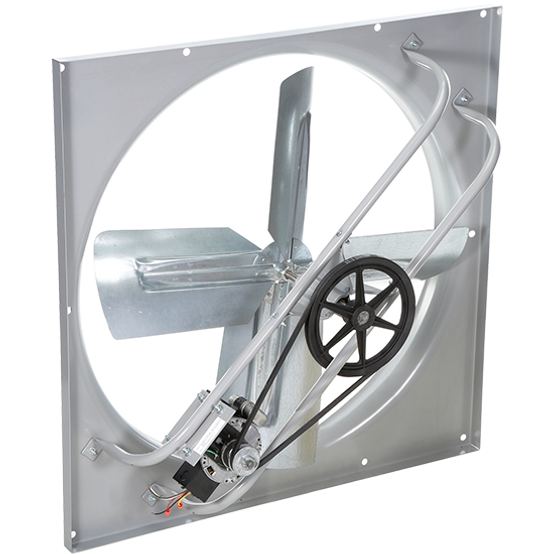 low-pressure-belt-drive-exhaust-fan-bann