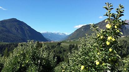 Attività agriturismo Casa Preti Cagnò Val di Non Trentino
