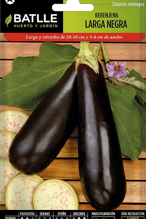 Albergínia Llarga Negra