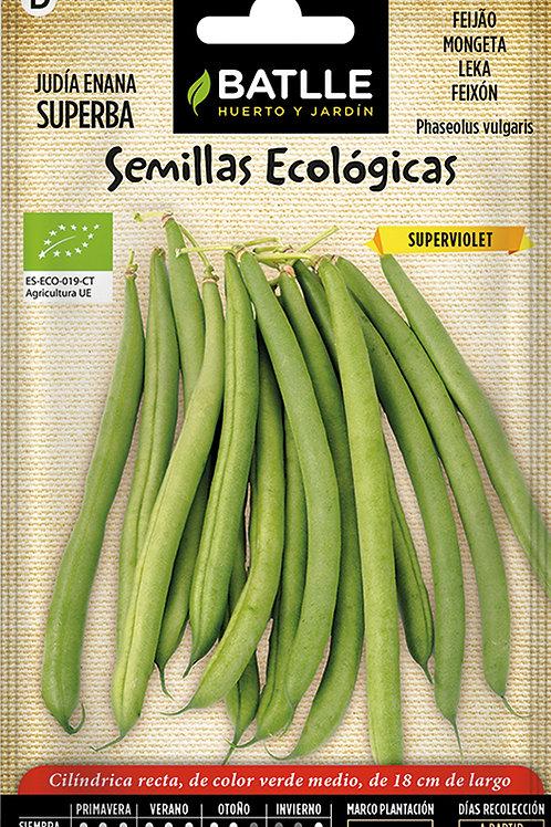 Mongeta Superviolet - Eco - Sobre
