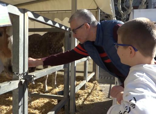 Trobar un tresor o visitar el bestiar, algunes de les activitats de diumenge de Candelera