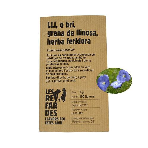 Lli, o bri, llavor de llinosa, herba feridora Llavor ECO