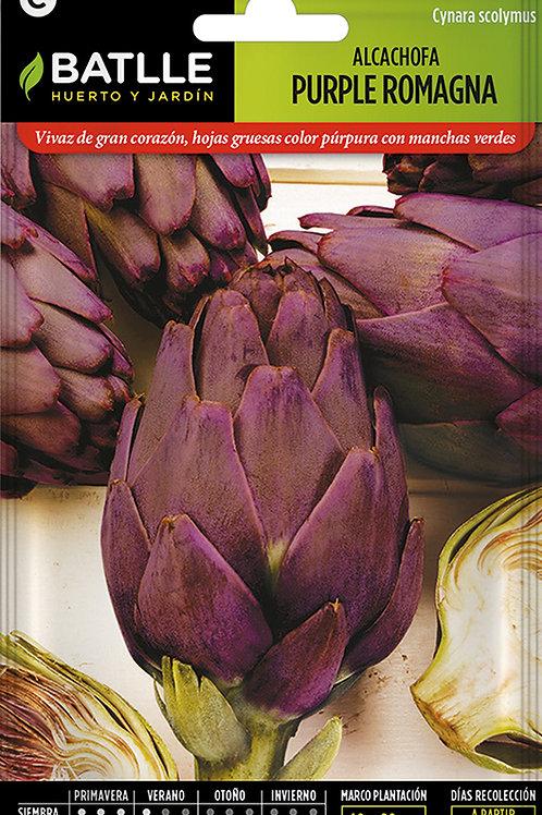 Carxofa Purple Romagna
