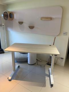 寶10043升降桌 陶瓷白+冰島白橡.jpg
