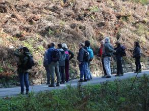 Coinvolgimento delle comunità locali in attività di monitoraggio della fauna selvatica