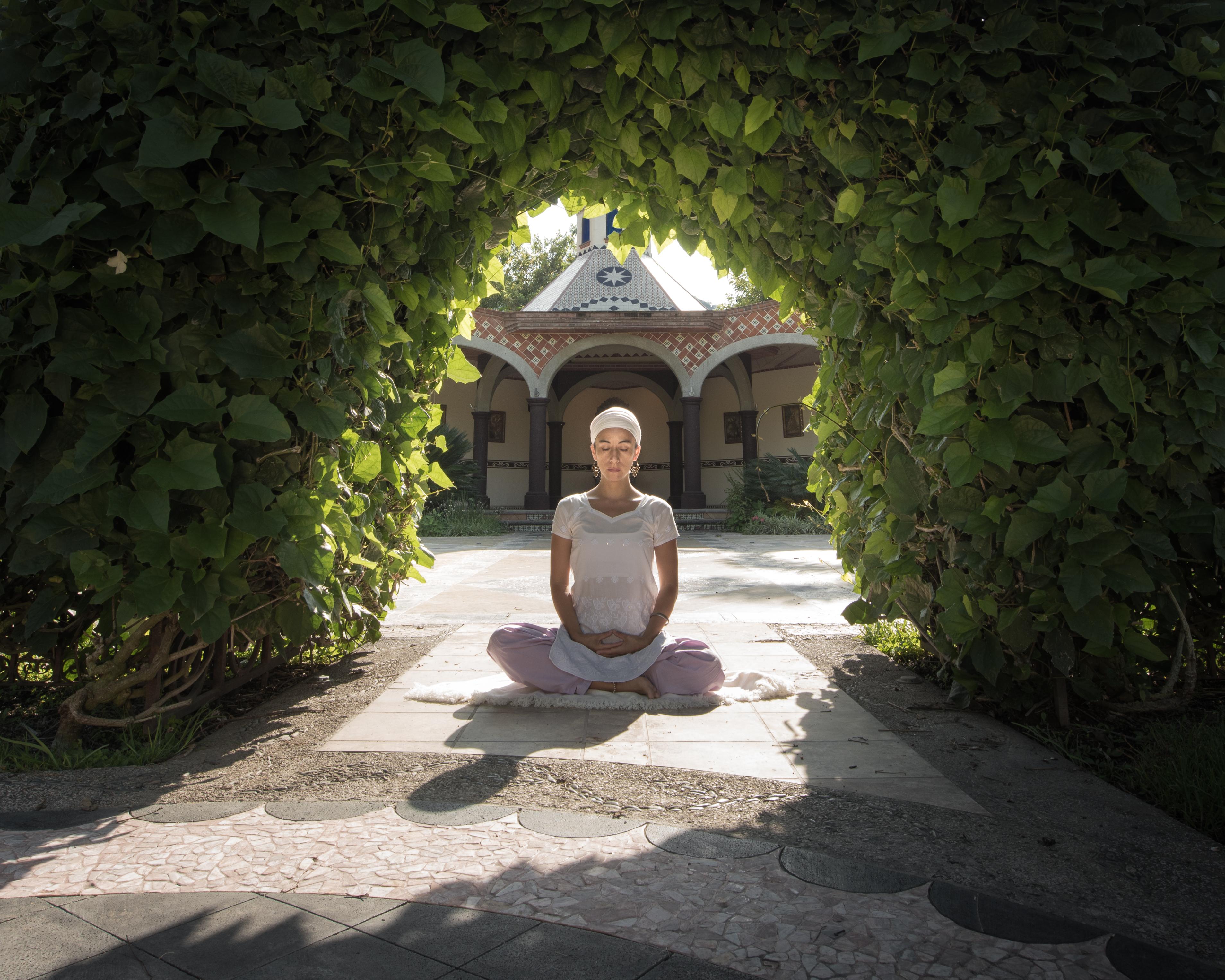 Siri Shakti / Budhi Mudra
