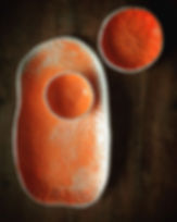 Orange ._._._._.jpg