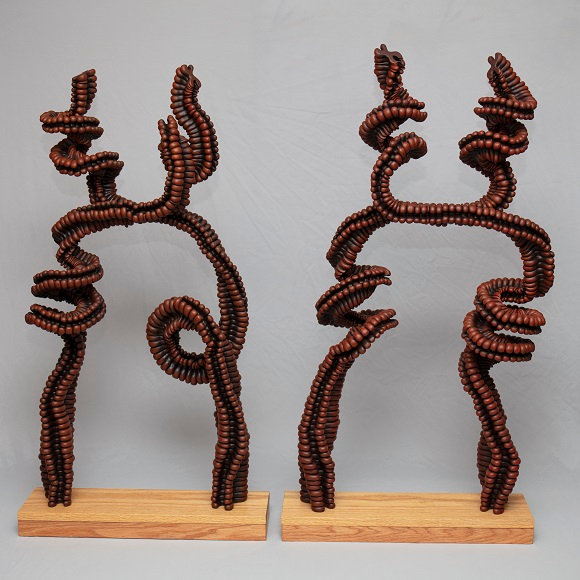 Umber Chromosome Pair 2012