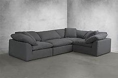 sectional couch.jpeg