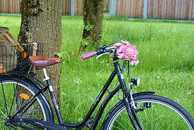 bike-1418468_1280.jpg