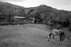 PERU-16_Chiric-Sacha