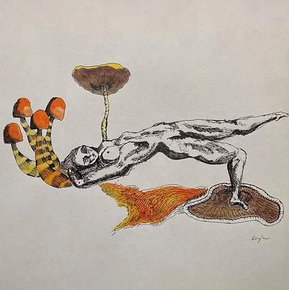 Forest Dancer Print