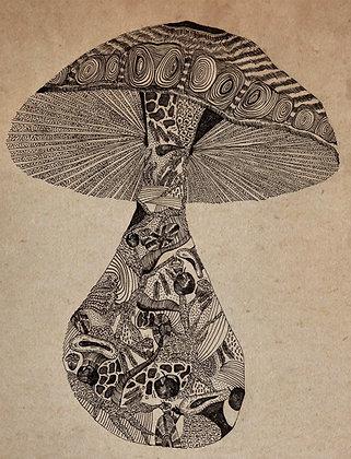 Big Groovy Mushroom Print