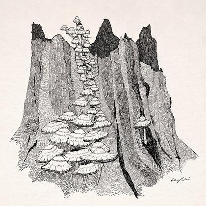 Woodland Wizard Print