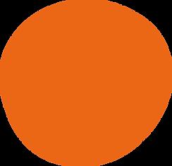 Orange Circle.png