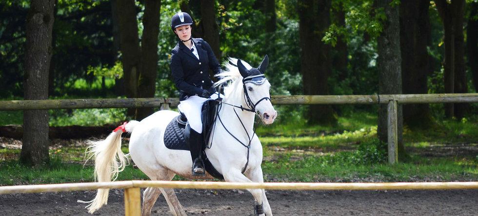 Cours dressage & obstacles - équitation classique - perfectionnement