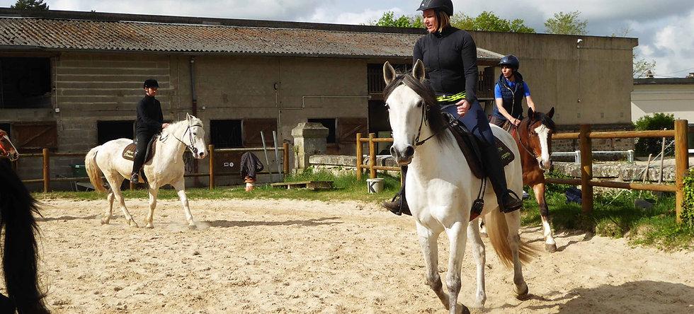 Cours d'équitation pleine nature- perfectionnement