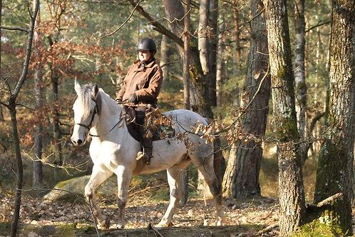 Balade à cheval - 2 heures