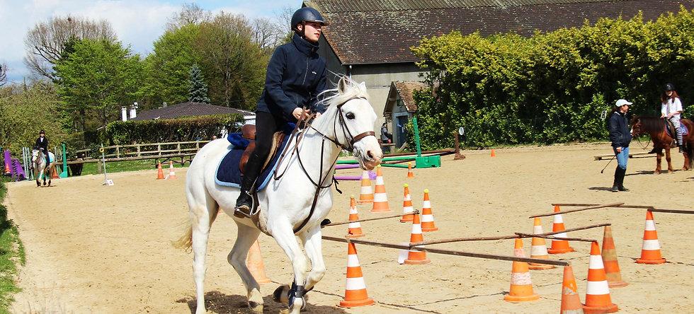 Journée de stage à cheval - équitation classique