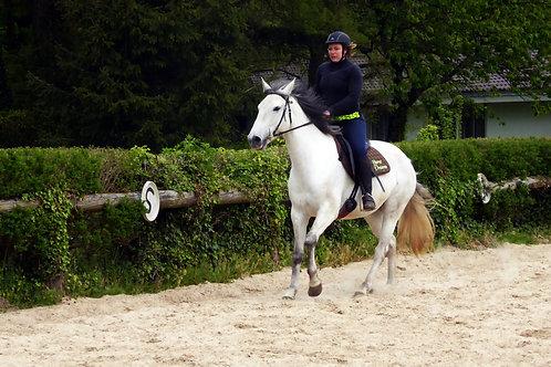 Position à cheval