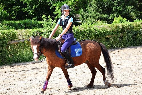 Cours - Equitation classique