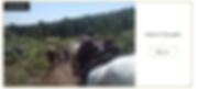 randonnée cheval fontainebleau