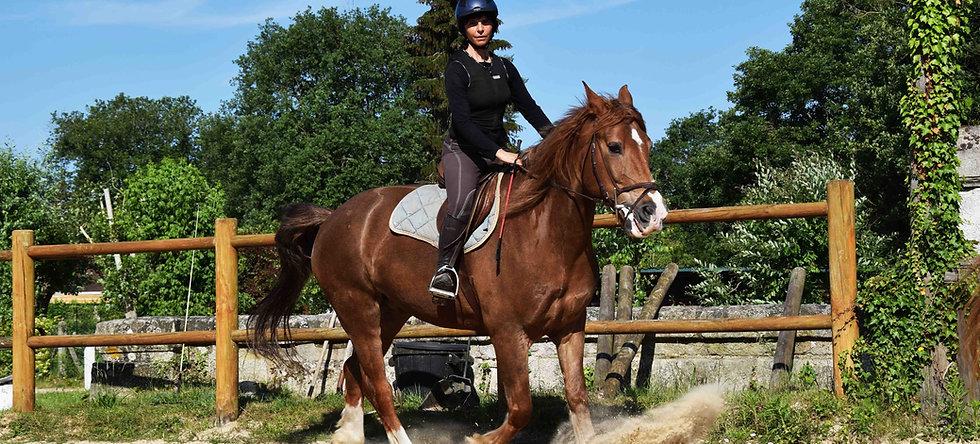 Cours - équitation classique - initiation