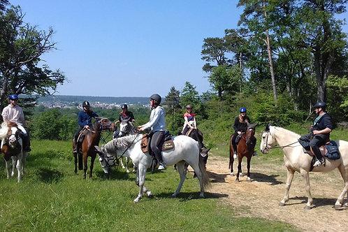 Week end à Fontainebleau via Bois le Roi