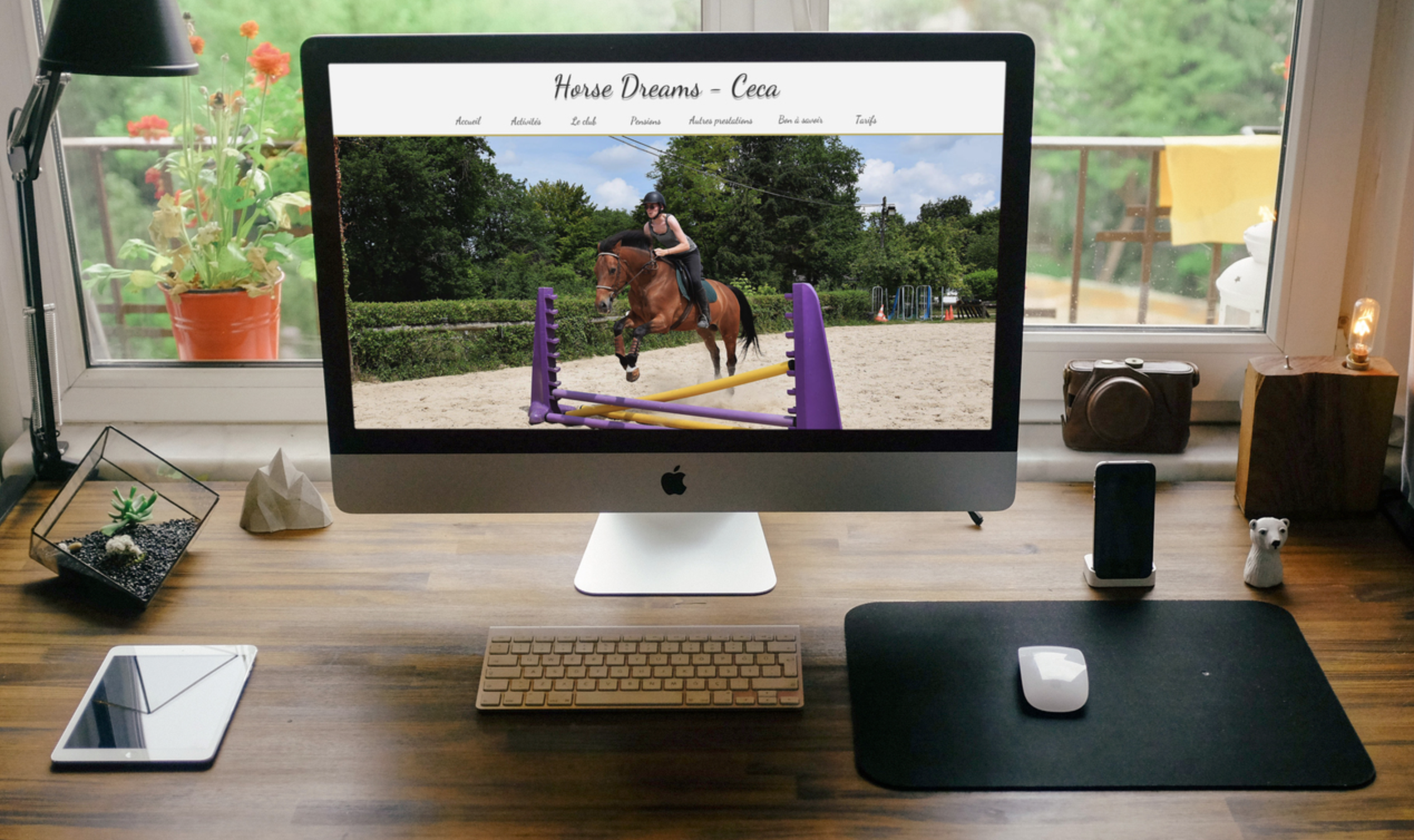 (c) Horse-dreams.com