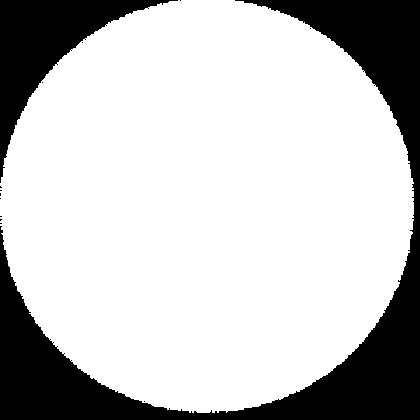 white_soft_grad_dot_edited.png
