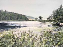 Little Long Pond