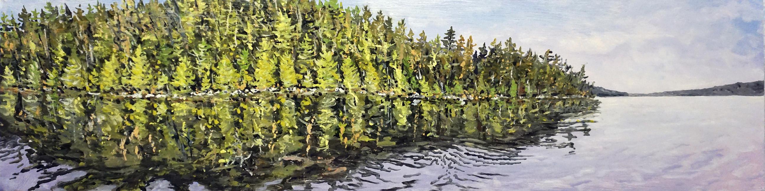 Long Pond Shoreline