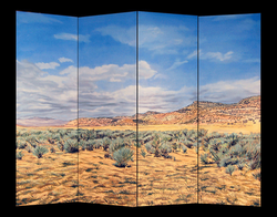 Colorado Desert 2