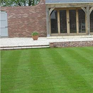 Four Seasons Grass Seed Mix (Cold Growing Lawn Seed)
