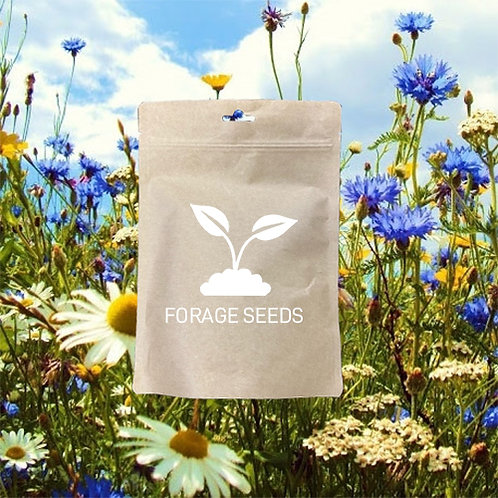 PREMIUM WILDFLOWER SEED MIX 100%