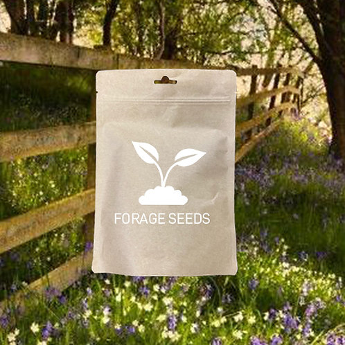 Woodland & Heavy Shade Wildflower Seed Mix 100%