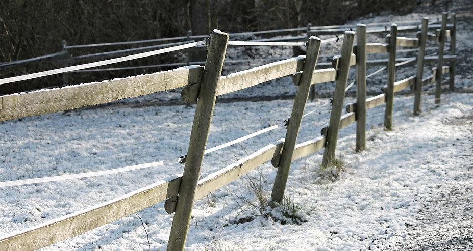 pasture-fence-3132780_1920.jpg