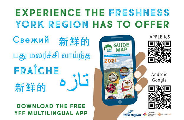 YFF21_APP_Multilingual.png
