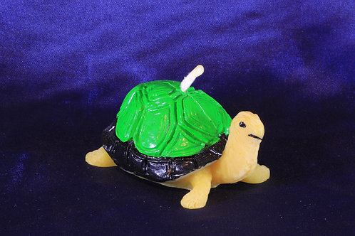 89624090 Schildkröte grün