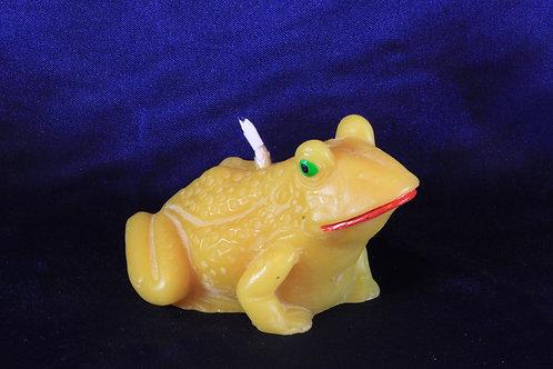 89760100 Frosch