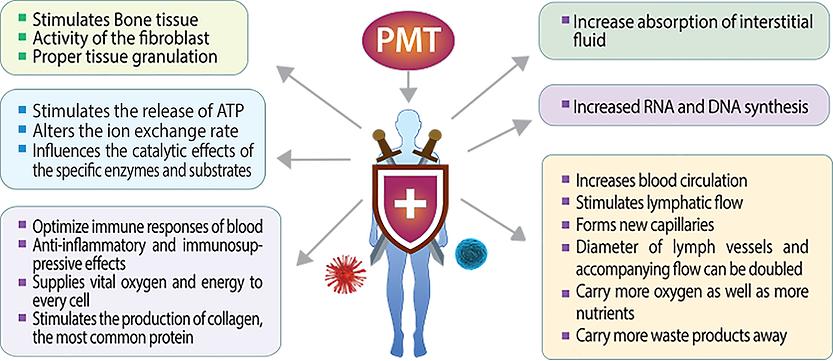 immune1.png