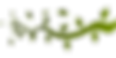 branch-152113_960_720.png