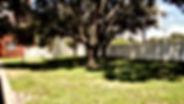 DSC01121_edited.jpg