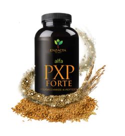 PXP-FORTE