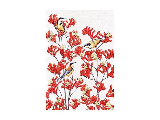 Royal Botanic Gardens Tea Towel 50x70cm Spinebill