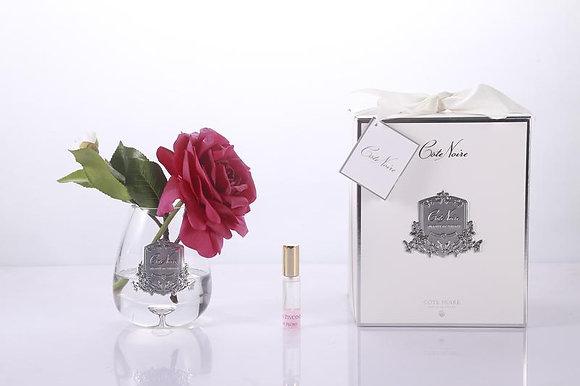 Tea Rose Carmine Red - Clear