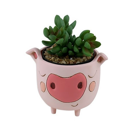 Baby PIGGY Planter